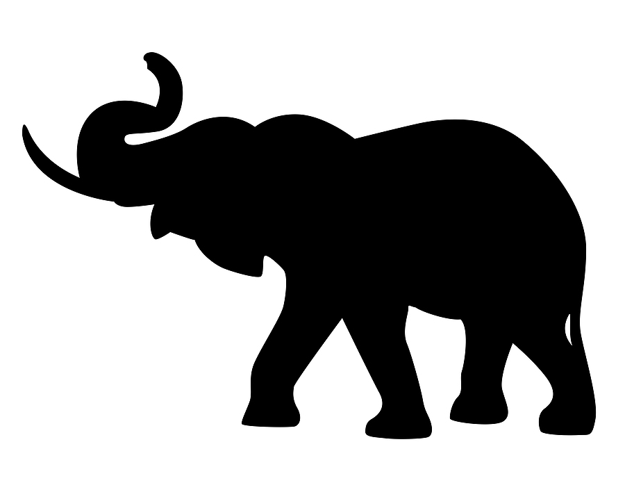 Cybersecurity, the elephant in the room or just smoke and mirrors?